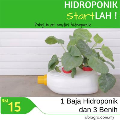 HIDROPONIK Start LAH!.